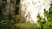 Salerno Giardino della Minerva orizzontale_10