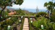 Salerno Giardino della Minerva orizzontale_15