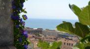Salerno Giardino della Minerva verticale