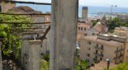 Salerno Giardino della Minerva verticale_11