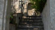 Salerno Giardino della Minerva verticale_12