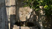 Salerno Giardino della Minerva verticale_14